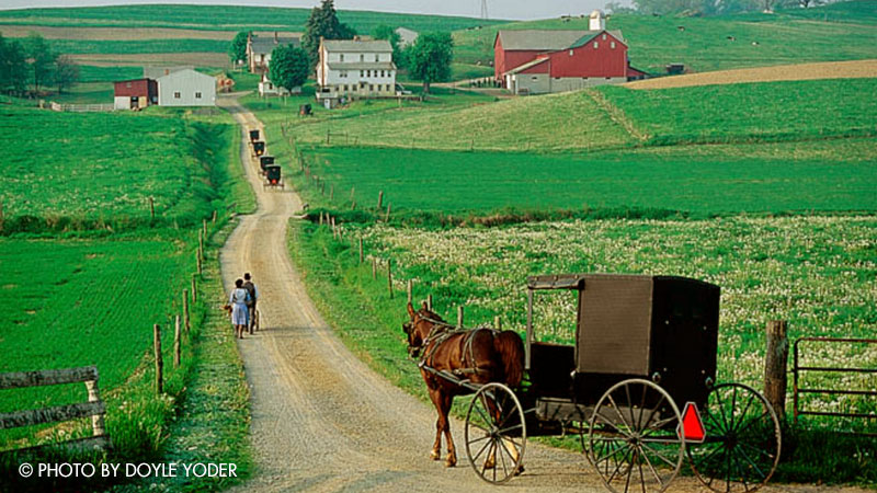 About the Tobe Amish Order